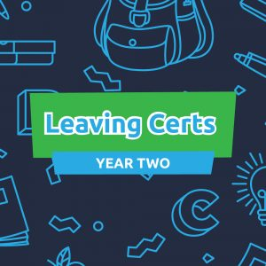 Career Coach Mentoring Membership for Leaving Certs: Year Two
