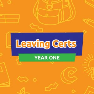 Career Coach Mentoring Membership for Leaving Certs: Year One